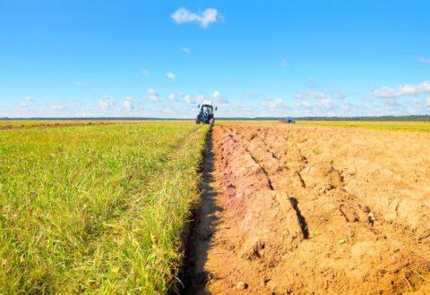 agricoltura-campo-agricolo-trattore-by-hramovnick-fotolia-750