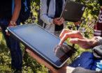 tablet-vite-vigneto-studenti-groinnovation-edu-mach-fonte-il-750