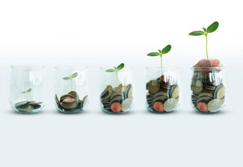 assicurazioni-piante-soldi-monete-vasetti-by-adrianilie825-adobe-stock-750