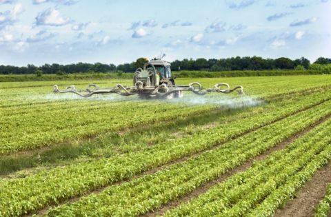 agrofarmaci-fitosanitari-distribuzione-by-federico-rostagno-fotolia-750