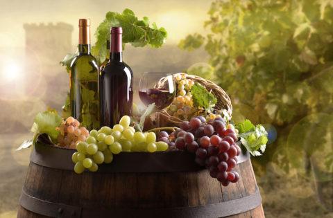 Bottles of wine with barrel on vineyard